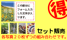 20枚x5種類セット名刺