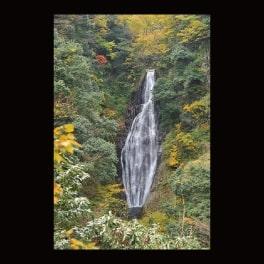 名刺_大山隠岐国立公園・船上山 鱒返しの滝