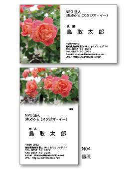 薔薇 N04
